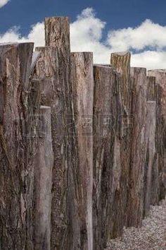 Afbeelding van trunk tree bark, wooden fence, background and afterimage stockfoto, beelden en stockfotografie. Image 5597804.