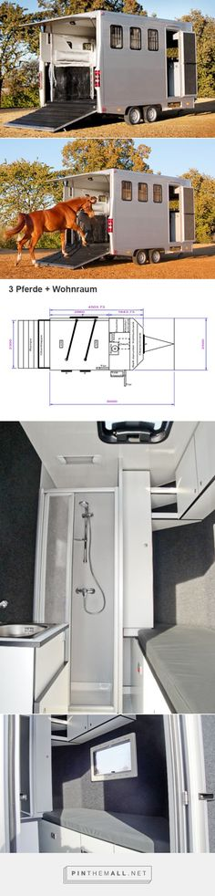 FK Pferdetransporter horse trailer with compact living quarters.... - a grouped images picture - Pin Them All