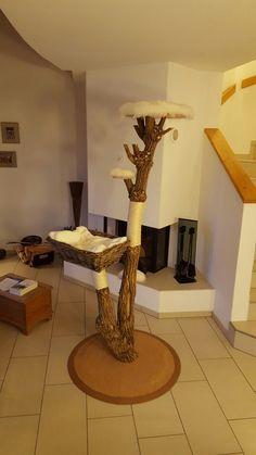 kratzbaum aus einer birke alles f r die katz pinterest kratzbaum birken und katzen. Black Bedroom Furniture Sets. Home Design Ideas