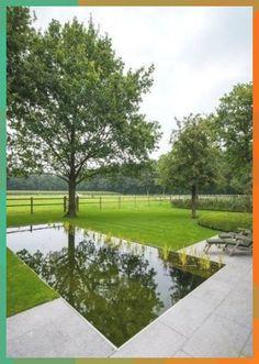 looks like a fresh water pool, swimming pond, aquatic plant edge, reflecting pool Tropical Landscaping, Modern Landscaping, Backyard Landscaping, Terrace Garden, Water Garden, Pond Design, Garden Design, Pool Water Features, Landscape Design Plans