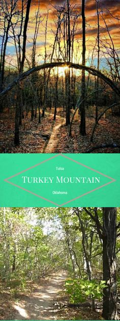 Explore the Turkey Mountain Urban Wilderness area located just minutes from downtown Tulsa. This undeveloped wilderness is the perfect escape when you need to get away from the city.