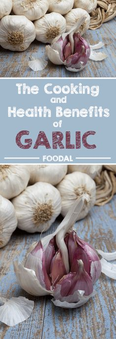 """Garlic is an herb that simply provides that """"wow"""" factor in all sort of cuisines. However, few folks know that this superfood has a bunch of medicinal properties. It can help protect your heart and defend against colds, bronchitis, infections, high blood pressure, and stroke. Find out more about this powerful and tasty ingredient now. http://foodal.com/knowledge/herbs-spices/cooking-health-benefits-garlic/"""