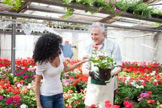 Realistic Graphic DOWNLOAD (.ai, .psd) :: http://jquery.re/pinterest-itmid-1007098092i.html ... Flowers in a greenhouse ...  activity, blooming, business, buy, floral, florist, flower, flowers, garden, gardener, gift, green, growing, horticulture, housework, man, natural, people, person, plant, pot, shop, spring, summer, woman  ... Realistic Photo Graphic Print Obejct Business Web Elements Illustration Design Templates ... DOWNLOAD :: http://jquery.re/pinterest-itmid-1007098092i.html