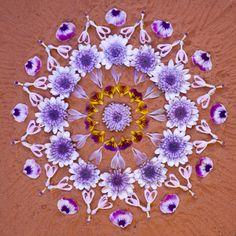 Floral Flower Mandala by Holistic Habits Art Floral, Land Art, Mandala Art, Mudras, Flower Rangoli, Flower Circle, Art Sculpture, Pressed Flower Art, Environmental Art