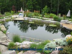 Natural Swimming Pool - Pond in the forest - contemporary - pool - toronto - Genus Loci Ecological Landscapes Inc. Swimming Pool Pond, Natural Swimming Ponds, Natural Pond, Swimming Pool Designs, Backyard Water Feature, Ponds Backyard, Backyard Retreat, Pond Landscaping, Landscaping With Rocks
