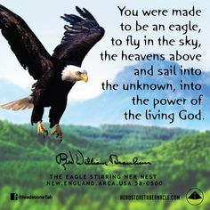 You were made to be an eagle, to fly in the sky, the heavens above and sail into the unknown, into the power of the living God. Image Quote from: THE EAGLE STIRRING HER NEST - NEW ENGLAND AREA USA 58-0500 - Rev. William Marrion Branham