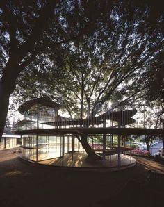 """Denominado como """"Ring Around a Tree"""" o projeto do escritório Tekuza Architects, no Japão, anexou um novo corpo ao Jardim de Infância Fuji, através de uma obra, que com uma solução simples e econômica, é muito representativa para a localidade. O perímetro do edificio cilindrico está alinhado com as salas de aula e espaços de espera, de modo que as crianças em contato com a velha árvore, possam sonhar ao olhar para fora das janelas.   Acesse Arquitetando ao redor de uma Árvore • Jardim de…"""