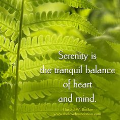 Serenity is the tranquil balance of heart and mind.-Harold W. Becker #UnconditionalLove