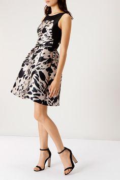 Short Dresses   Other OALI PRINT DESDEMONA DRESS   Coast Stores Limited