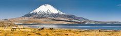 Lauca National Park - Chile by guillaumemontarnal via http://ift.tt/25PvVFb