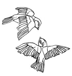 I like the way the birds are flying together, as if one is leading the other. This is different to most bird tattoos.