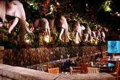 Amazing and Extraordinary Restaurant Design of Rainforest Cafe Las Vegas Hotel Deals, Las Vegas Restaurants, Awesome America, Rainforest Cafe, New Business Ideas, Restaurant Interior Design, Jungle Theme, Galveston, Grand Hotel