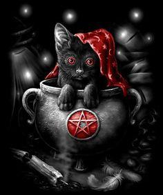 Cat in Cauldron