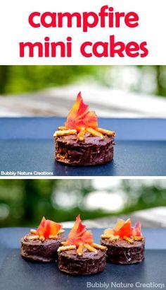campfire mini cakes