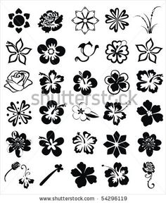 1000 Images About Picking The Perfect Flower Tatoo On