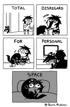 Sarah Andersen on – makingtrends Animal Jokes, Funny Animal Memes, Cat Memes, Funny Cats, Funny Animals, Funny Memes, Funny Horses, Hilarious, Funny Cartoons