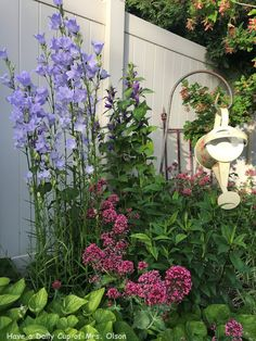 Have a Daily Cup of Mrs. Olson-Cottage garden