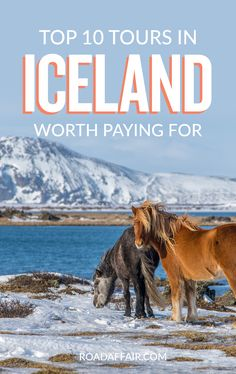 Looking for things to do in Iceland? Look no further. Click the pin to read about the best tours in Iceland actually worth paying for. #Iceland