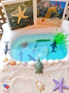 50 Actividades con agua + Imprimible Juego de Pesca – Montessori Mami