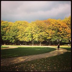#Autumn is a great season to #VisitBrussels the #Cinquantenaire park in #Brussels pic by @kat_ior
