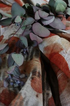 eucalyptus print- check out Monika's blog, red2white ... Wonderful explorations!