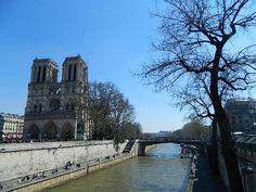 Catedral de Notre Dame, Paris Notre Dame, Mansions, House Styles, Building, Travel, Places, Mansion Houses, Voyage, Manor Houses