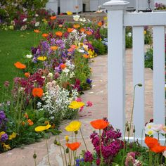 Do you want to take a respite at the corner of your neighbour's beautiful garden?