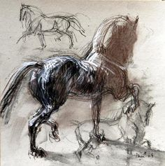 Horse - Jean-Louis Sauvat, artiste et cavalier Horse Drawings, Animal Drawings, Art Drawings, Painted Horses, Art And Illustration, Arte Equina, Images D'art, Horse Sketch, Horse Anatomy