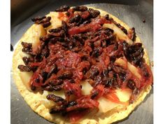 Cricket Quesadilla and other recipes (mealworm grits, banana-oat mealworm muffins with cricket flour)
