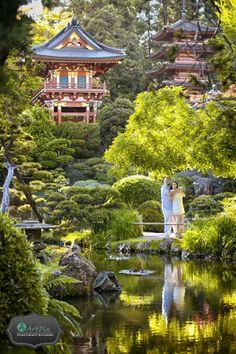 San Francisco Japanese Tea Garden Photos