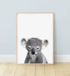 Bear Nursery, Animal Nursery, Nursery Art, Nursery Decor, Australian Nursery, Australian Animals, Baby Koala, Photo Composition, Kids Room Wall Art
