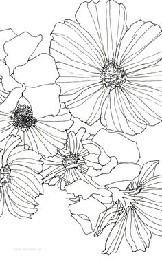 ebc6b6eb80f6b043c46bbe575e7ab490--drawings-of-flowers-pen-drawings.jpg (736×1179)