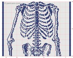 Charts to knit/crochet skeleton scarf