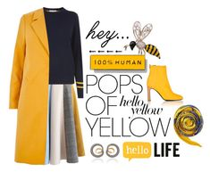 Pops of Yellow by igiulia on Polyvore featuring River Island, Chicwish, Everlane, rag & bone, Queen Bee, Hermès, PopsOfYellow and NYFWYellow