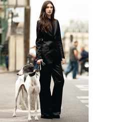The best part is the dog! Go Greythounds! From Chloe Spring 2012 lookbook