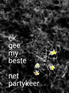 Ek gee my beste, net partykeer - die heuwels fantasties lirieke . Song Quotes, Words Quotes, Wise Words, Qoutes, Funny Quotes, Afrikaanse Quotes, Fantasy Quotes, Out Loud, Music Is Life