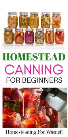Homestead canning for beginners. I can't wait to give this a try this year!