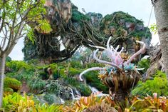 Quick and Dirty guide to exploring Pandora Walt Disney World Vacations, Disney Parks, Pandora Animal Kingdom, Avatar Movie, The Kinks, Dog Insurance, Magical Forest, Disney Family, Animals Of The World