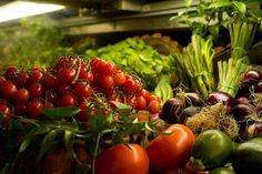Alimentos anticáncer: tomate, frutas cítricas, brócoli, coliflor, legumbres, aceite de oliva, salmón, cúrcuma, orégano, cereales integrales, nueces...