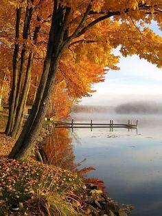 Autumn, lakeside.