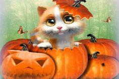 cute cat halloween  textures grass emotional october 31st holidays butterflies digital art pumpkins creative premade kitten s photomanipulation lovely trees most downloaded love four seasons