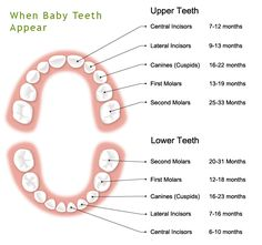 Baby's first tooth Whitening your teeth are often AN expertise you may not simply forget. Baby Teething Chart, Natural Teething Remedies, Natural Teeth Whitening, Dental Services, First Tooth, Sleepless Nights, White Teeth, Dental Health, Cavities