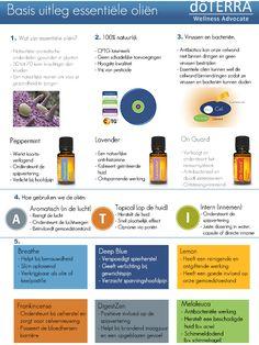 Basis Uitleg Essentiële Oliën Tear Pad - Nederlands