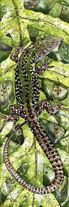 LIZARD GREEN NATURE Elena Yakubovich Painting  - LIZARD GREEN NATURE Elena Yakubovich Fine Art Print