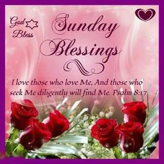 145 Best Sunday Blessings Images Good Morning Quotes Happy Sunday