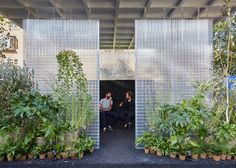"""Asif Khan and MINI create """"forests"""" in see-through boxes across east London"""