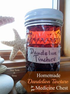 Homemade Dandelion Tincture, botanical print, Taraxacum officinale, how to make spring greens, homemade detox, stock medicine cabinet, sprin...