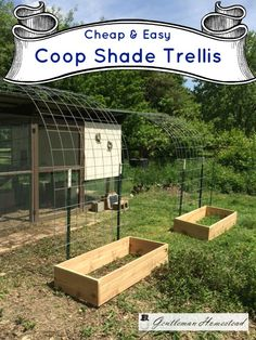 Building A DIY Chicken Coop If you've never had a flock of chickens and are considering it, then you might actually enjoy the process. It can be a lot of fun to raise chickens but good planning ahead of building your chicken coop w Easy Chicken Coop, Chicken Garden, Portable Chicken Coop, Chicken Chick, Chicken Coop Plans, Building A Chicken Coop, Chicken Runs, Chicken Lady, A Frame Chicken Coop