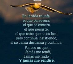 Jamás me rendiré Happy Words, Wise Words, Inspirational Phrases, Motivational Quotes, Positive People, Dad Quotes, Positive Messages, Spanish Quotes, Sentences