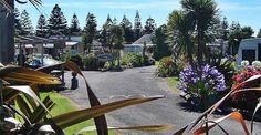 Whanganui Seaside Holiday Park Seaside Holidays, Holiday Park, Camping Spots, Sidewalk, Beach, The Beach, Side Walkway, Walkway, Beaches